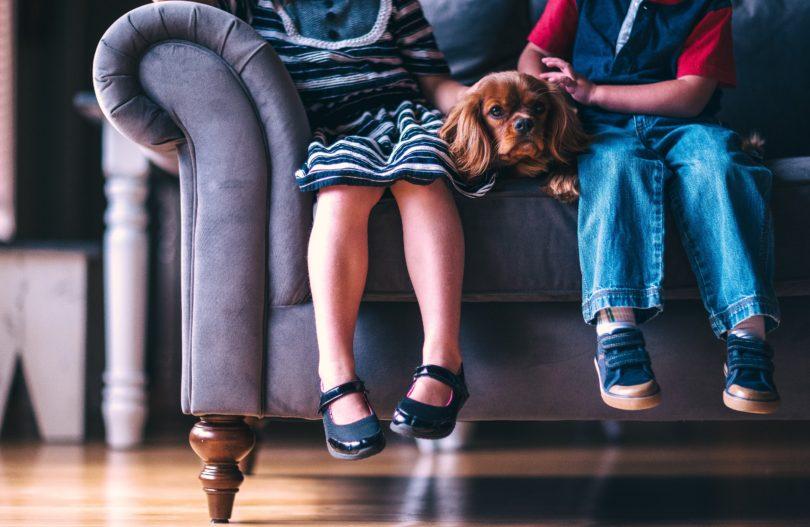 I Have Kids, But I'm Stil a Dog Mom www.herviewfromhome.com