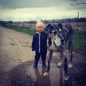 Here's Why Little Kids Need Big Dogs