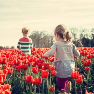 5 Ways to Get Your Kids on the Road to Independence