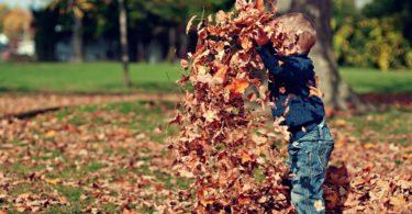 The Seasons of Motherhood