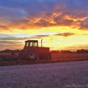 12 Important Life Lessons I Learned Growing Up On A Farm