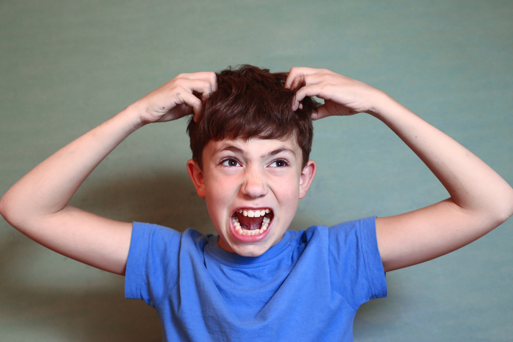 What To Do When Lice Attacks (Instead of Burning Down The House) www.herviewfromhome.com