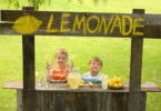 This is Why I Stop at Lemonade Stands and You Should Too www.herviewfromhome.com