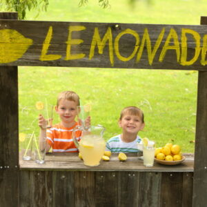 This is Why I Stop at Lemonade Stands and You Should Too