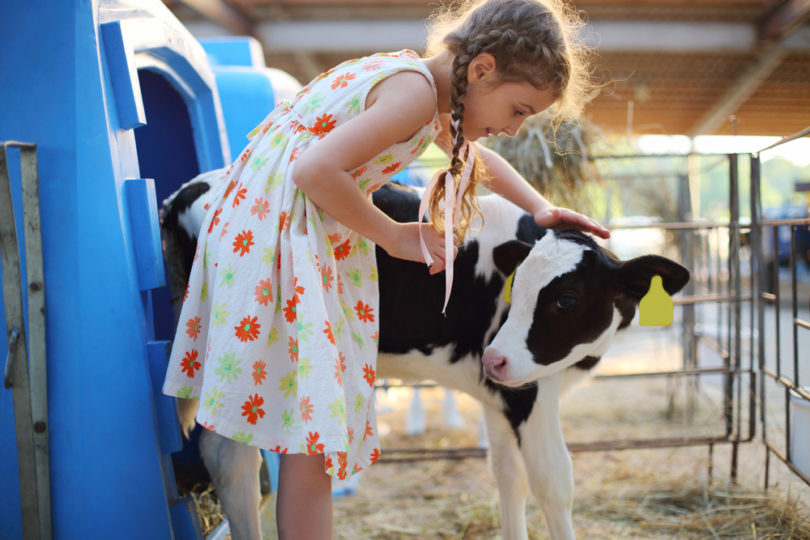 3 Reasons Farm Kids Grow Up to Be Successful www.herviewfromhome.com