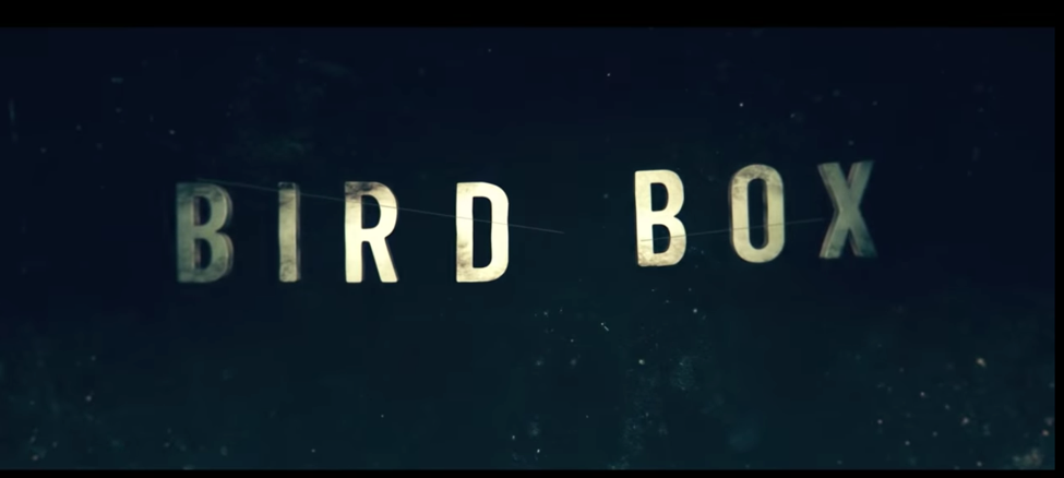 The Netflix Movie Bird Box Is All Over Your Newsfeed So Should You
