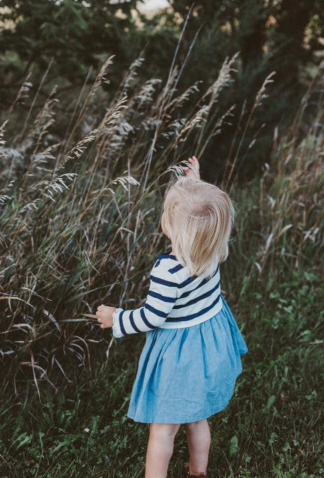 Little girl reaching for stalk of wheat