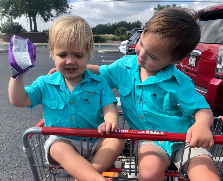 Two little boys sitting in shopping cart