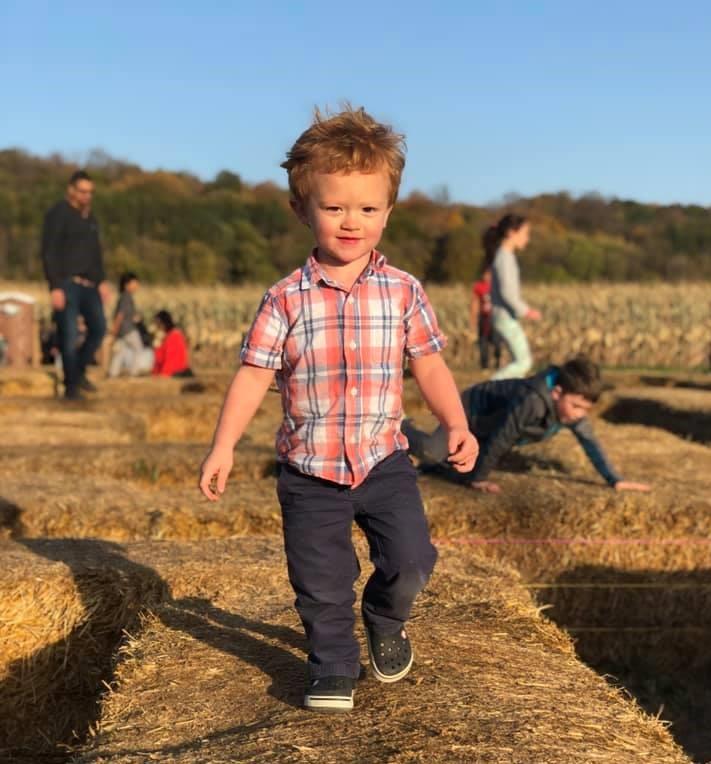 Little boy in pumpkin patch