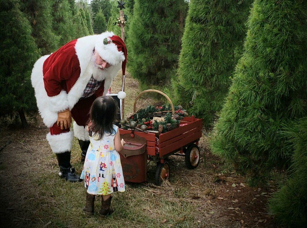 Little girl with Santa at Christmas tree farm