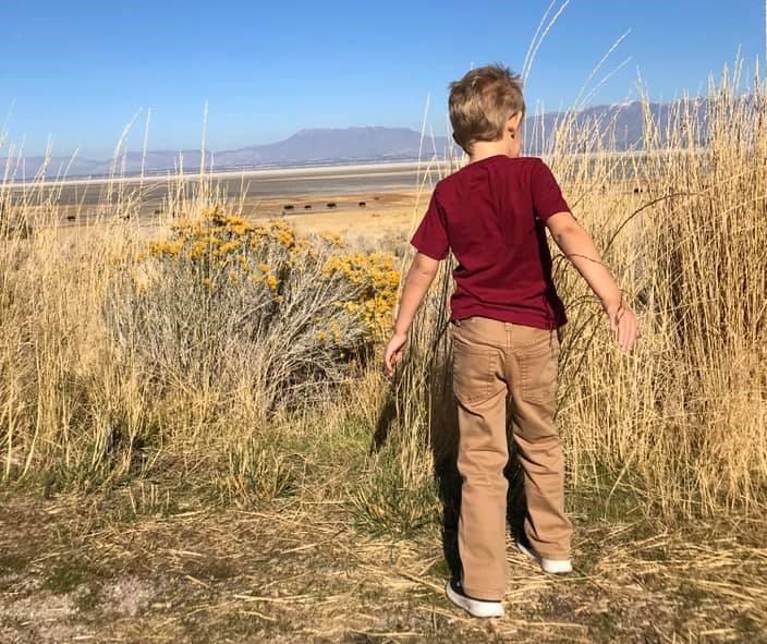 Little boy walking in a field