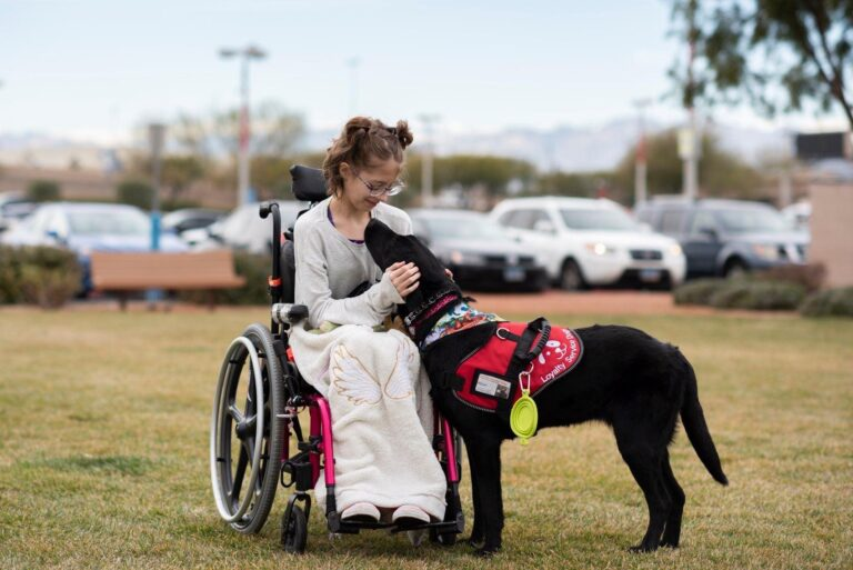 Girl in wheelchair outside