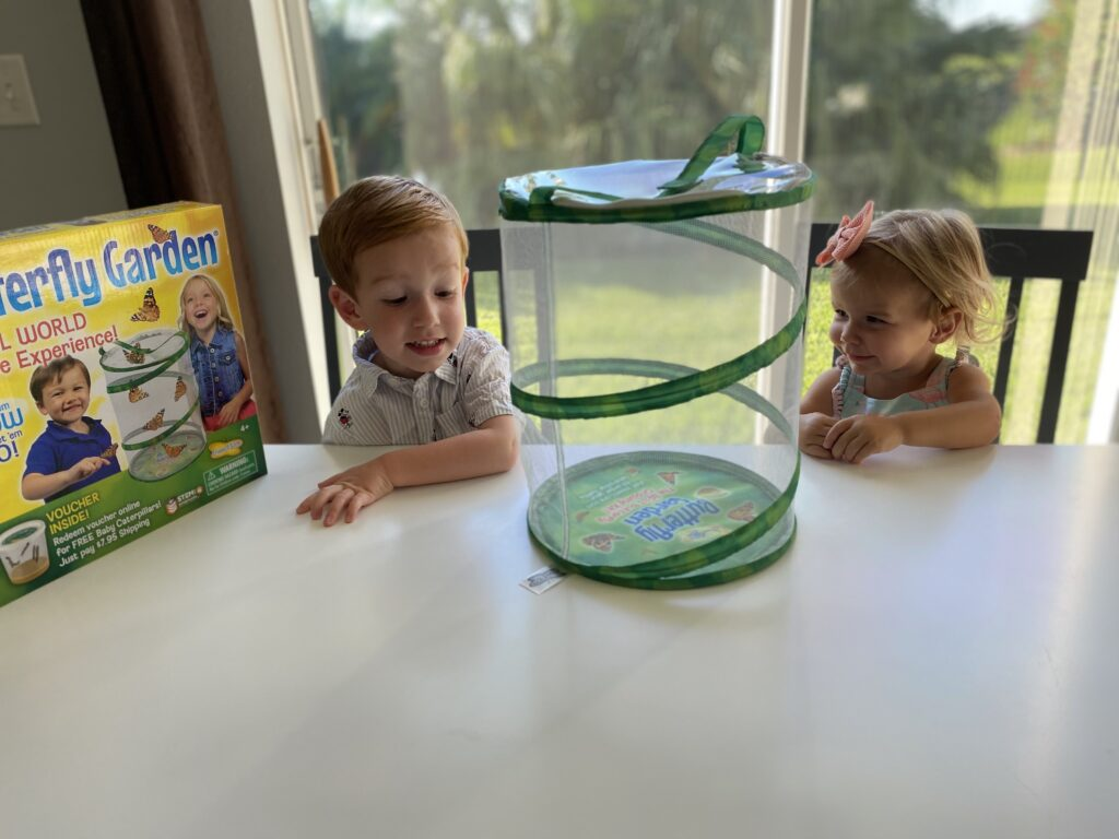 Two toddlers with Butterfly Garden