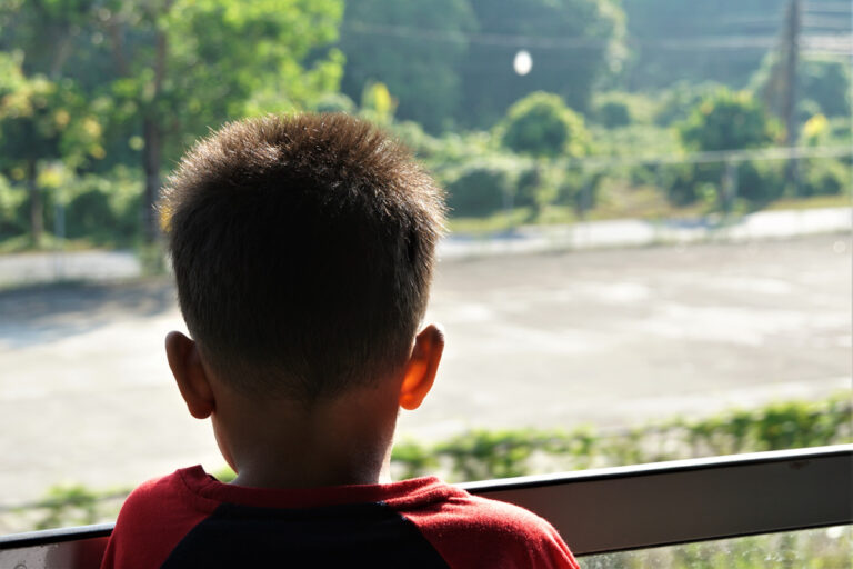 Back of young boy's head looking out window
