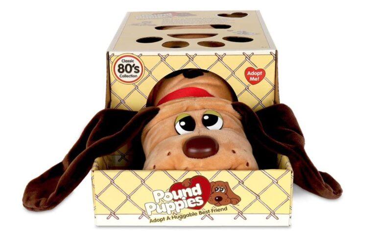 Pound Puppies Basic Fun/Amazon