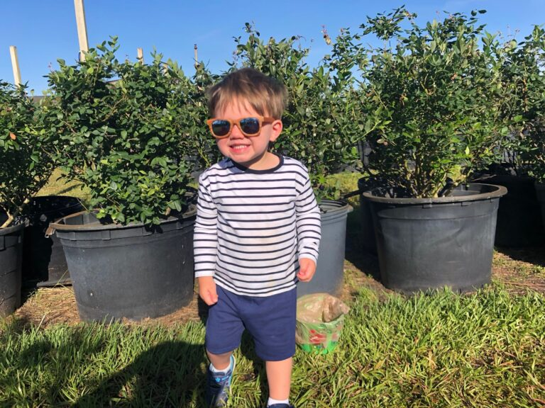 Toddler boy standing next to plants, color photo