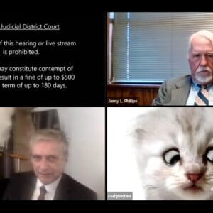 """""""I'm Not a Cat."""" Texas Lawyer Becomes the Only Cat Video You Need Today."""