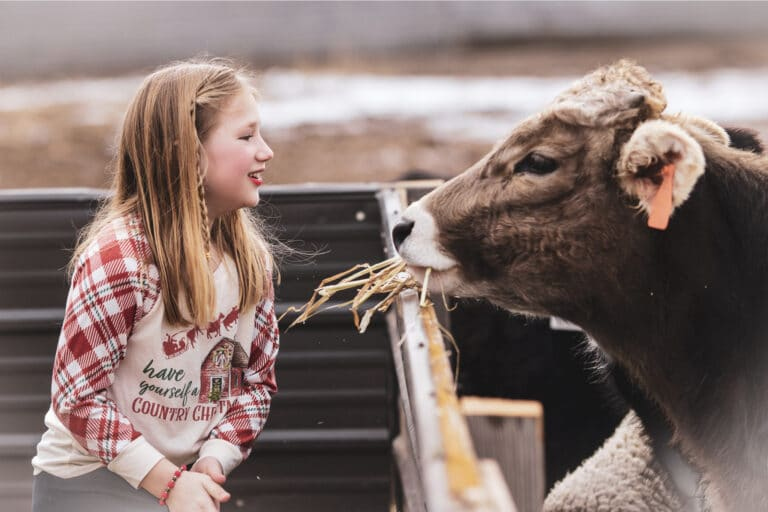 Young girl looking at cow, color photo